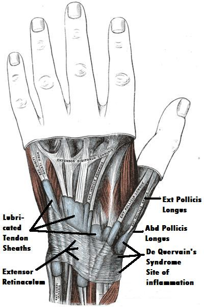 left wrist forearm pain